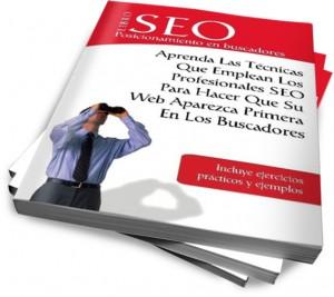 Libro SEO posicionamiento web